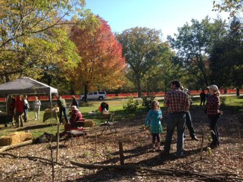 2015 orchard fest