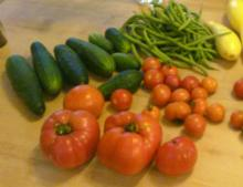 Tomatoes and cukes … oh my!