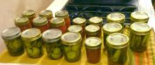 """Pickling"" tomatoes, zuchinni pickles and cucumbers"
